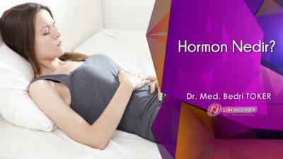 Hormon Nedir?