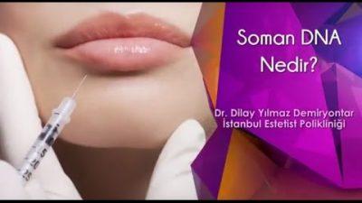 Somon DNA Nedir